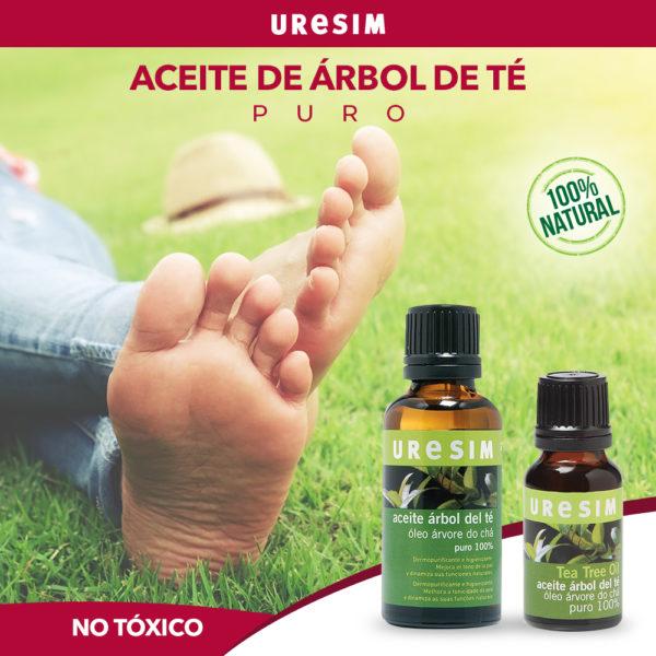Beneficios Y Propiedades Del Aceite Del árbol Del Té
